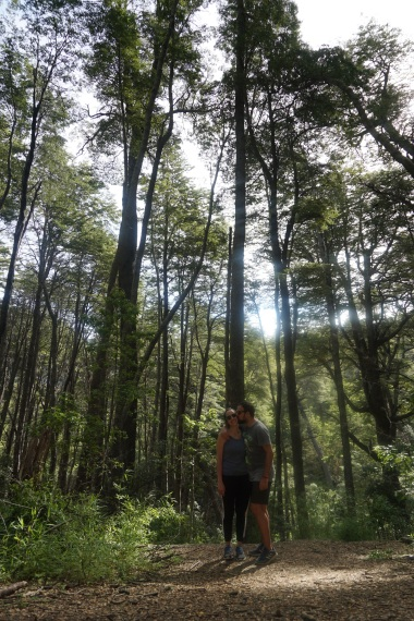 Bosque del Llao Llao